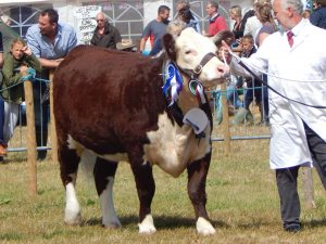 dunster show chris and winner